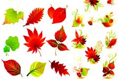 精美红叶矢量图素材