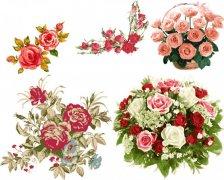 细腻彩绘玫瑰花束矢量素材