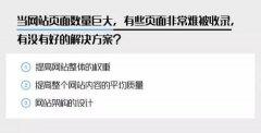 九枝兰专访SEO老炮儿Zac:企业主如何高效开展SEO